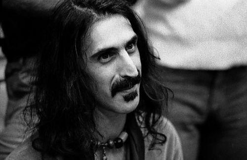 the musician frank zappa