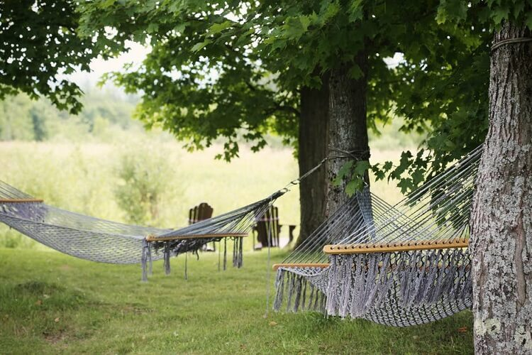 a resting area with trees and hammocks