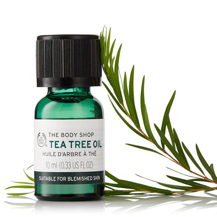 aftershave ingredient: tea tree oil