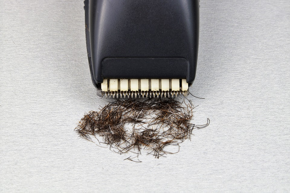 Shaver with hair